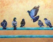 Six Pigeons at Manhattan Beach Pier