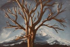 Highland Tree #2