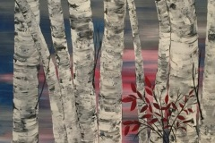 Birches at Sunset