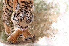 DupuisC_Majesty_Watercolour_16x12