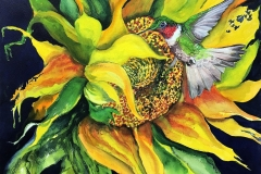 Sunflower and Hummer -watercolour 34x40