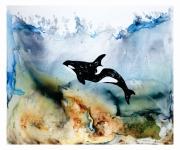 I Am Orca