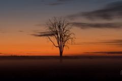 3- Fall Sunrise - Photography
