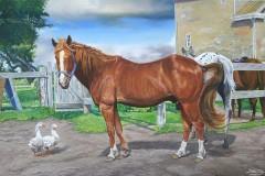 Barnyard Horse