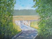 Limerick Marsh