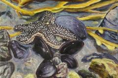 Gilly-Marston-03-Forbes-Seastar-Acrylic-11x14