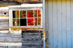 Fall Reflected