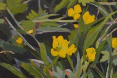 Godin - Buttercups - acrylic, 8x10