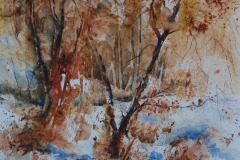 Huneault - Deciduous - Watercolour on Tissue Paper, 17x23_
