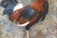 1.-Hon-Cockerel-acrylic-20x20