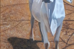 4.-Hon-Brahmin-acrylic-24x40
